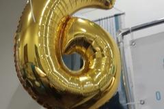 Празднование 6-ти летия